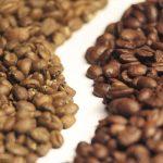 กาแฟ Arabica กับ Robusta แตกต่างกันอย่างไรกันนะ